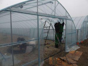 001b Building Of Forest Nursery