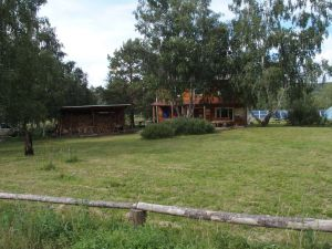 0052 Forest Nursery In August