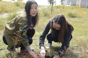 008 Afforestation Training In Zulzaga