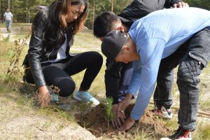 009 Afforestation Training In Zulzaga