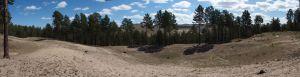 1 Pinus Silvestris At Zulzaga - Send Dunes