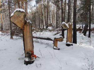 45 Preparing Of Theft Of Wood