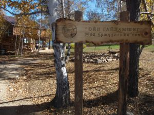 71 Our Forest Nursery Has Name - Forest Of Miracles